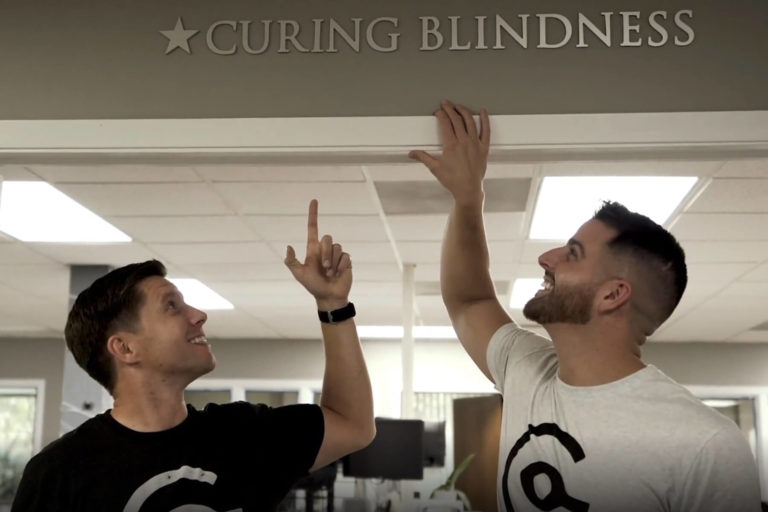Curing Blindness