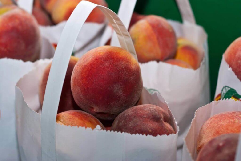 georgia peaches 1024x685
